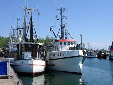 Ferienhof Hopp auf Fehmarn Inselbilder Am Hafen