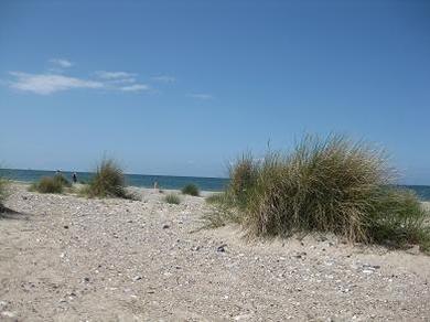 Ferienhof Hopp auf Fehmarn Inselbilder  Am Meer