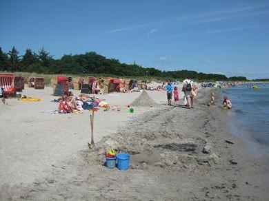 Ferienhof Hopp auf Fehmarn Inselbilder Stranderleben am Südstrand