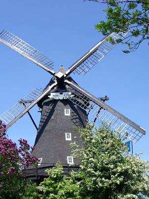 Ferienhof Hopp auf Fehmarn Inselbilder  Windmühle in Lemkenhafen